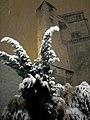 Snow and lights (4453848779).jpg