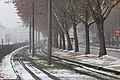 Snowing in linz tram line.jpg