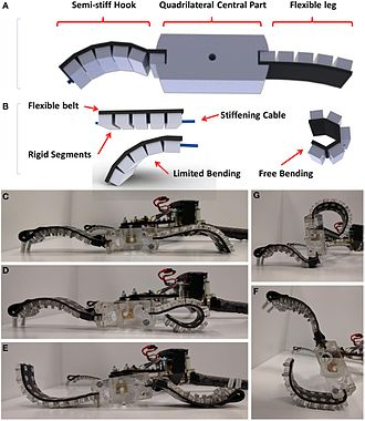 Soft robotics - Soft-Legged Wheel-Based Robot with Terrestrial Locomotion Abilities.
