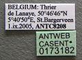 Solenopsis fugax casent0173182 label 1.jpg
