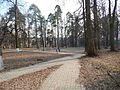 Sovetskiy rayon, Bryansk, Bryanskaya oblast', Russia - panoramio (243).jpg