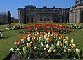 Springtime at Lyme Hall - geograph.org.uk - 1260096.jpg