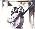 Squirrel monkeys sitting on a movie camera (3607622845).jpg