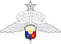 Sr AFP Military Freefall Badge.png