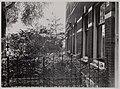Stadsarchief Amsterdam, Afb OSIM00004001760.jpg