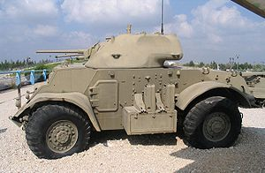 Staghound-latrun-3.jpg