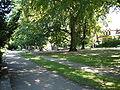 Stargard Park Chrobrego.JPG