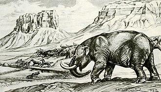 Stegomastodon - Restoration of S. mirificus