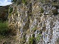 Steinbruch am Speckberg.jpg