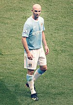 Stephen Ireland 2009 (cropped).jpg
