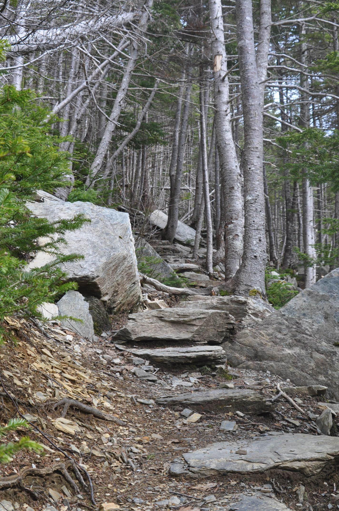 File Stepping Stone Stairs Jpg