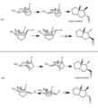 Stereochem of aza-Cope.tiff