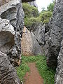 Stone Forest pathway 13.JPG