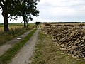 Stone dump by track on Boonhill Common - geograph.org.uk - 216401.jpg