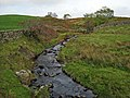 Stream near Cleughbrae - geograph.org.uk - 375017.jpg