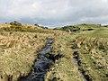 Stream running into Loch Finlaggan - geograph.org.uk - 302380.jpg