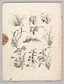 Studienblätter für Landschaftzeichner MET DP820696.jpg