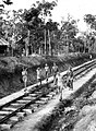 Sumatra railway allied POWs.jpg