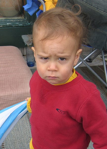 File:Summer 2007-101 (871613008).jpg DescriptionOmer's patented scowl. Date14 July 2007, 07:55 Source Summer_2007-101  Uploaded by MTHarden AuthorJon Eben Field from St. Catharines, Ontario, Canada