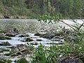 Summer Isar River Garching.jpg