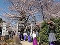 Suzumiya-Suwa Shrine.JPG