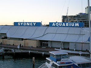 Sea Life Sydney Aquarium - Sydney Aquarium in 2006