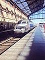TGV à Marseille.jpg
