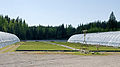 Taimi Tapio greenhouse and irrigation.jpg