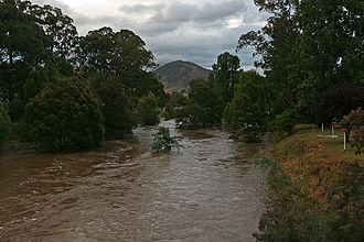 Tambo River (Victoria) - The Tambo River in flood at Swifts Creek, looking north