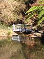 Tamborine Mountain Botanic Gardens 09.JPG
