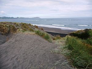 Kāwhia Harbour - Te Puia Springs are on the beach to the right from this track across the dunes.