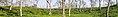 Tea gardens, Sripur - Wikivoyage banners of Sylhet (01).jpg