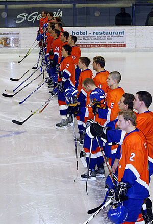 Netherlands men's national ice hockey team - The Netherlands national team in 2007.