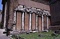 Temple of Juno Sospita and the Church of San Nicola in Carcere, Rome (4099547716).jpg