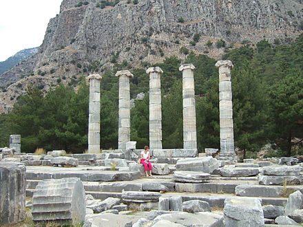 The temple of Athena (funded by Alexander the Great) in the ancient Greek city of Priene Templeofathenaprienemay2007.jpg