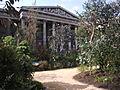 Temporary Australian garden outside the British Museum 205.JPG