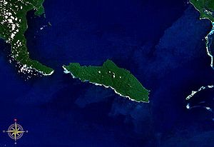 Tetepare Island seen from space. Southern portion of Rendova Island can be seen in the west.