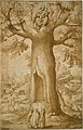 The Beech Tree of the Madonna at La Verna MET DT7479.jpg