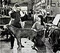 The Extra Girl (1923) - 14.jpg