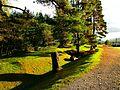 The Great Glen Way - panoramio.jpg