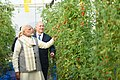 The Prime Minister, Shri Narendra Modi and the Prime Minister of Israel, Mr. Benjamin Netanyahu, at the Centre of Excellence for Vegetables, at Vadrad, in Gujarat on January 17, 2018 (8).jpg