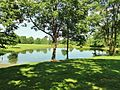The Sourland Mountain Preserve, Hillsborough, New Jersey, USA June 2012 - panoramio (2).jpg