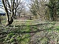 The fence at end of the Mid-Norfolk Railway.jpg