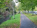 The path alongside Mill Road - geograph.org.uk - 1019508.jpg