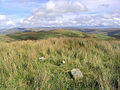 The summit of Naze Hill - geograph.org.uk - 564743.jpg