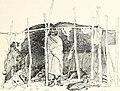 Through the heart of Patagonia (1902) (14760618956).jpg