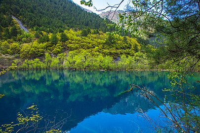 Tiger Lake Jiuzhaigou.jpg