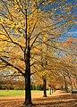 Tinicum Park (9) (10681621325).jpg