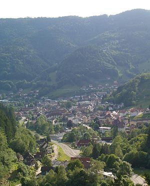 Todtnau - 2005 panoramic view