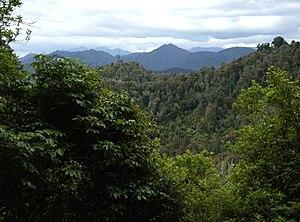 Te Urewera National Park - Image: Towards East Cape